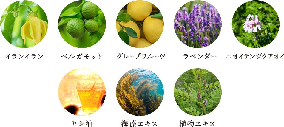 イランイラン、ベルガモット、グレープフルーツ、ラベンダー、ニオイテンジクアオイ、ヤシ油、海藻エキス、植物エキス、